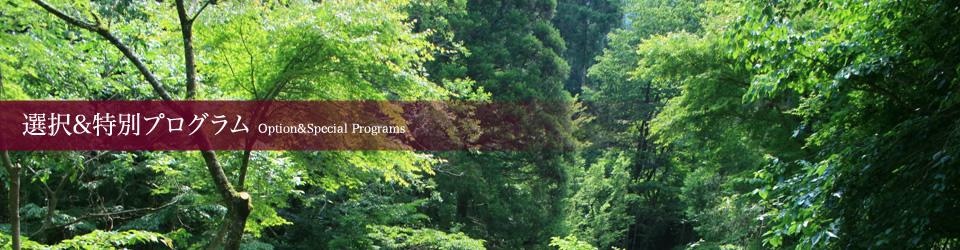 選択&特別プログラム
